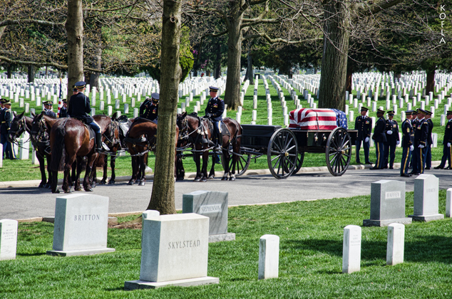 Arlington Cemetery 2 634