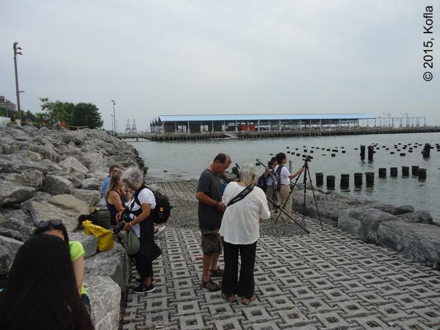 Brooklyn Bridge Park 4